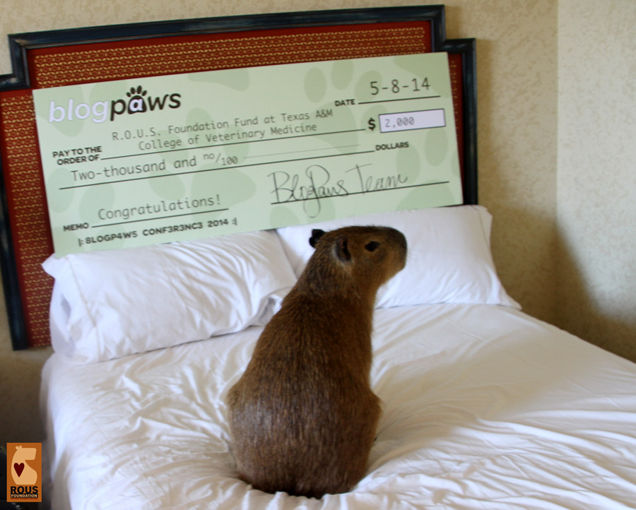 Mia checks out the check